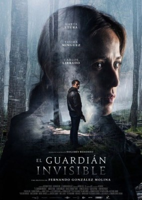 Невидимый страж / The Invisible Guardian (2017) WEBRip