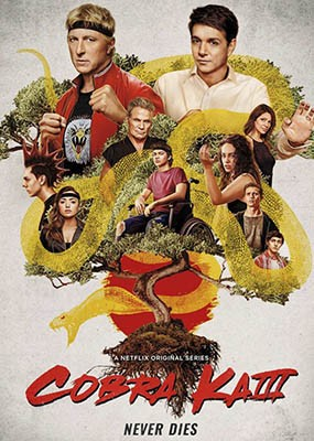 Кобра Кай / Cobra Kai - 3 сезон (2021) WEB-DLRip / WEB-DL (1080p)